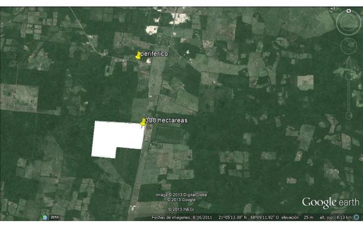 Foto de rancho en venta en  , tizimin centro, tizimín, yucatán, 1066641 No. 07