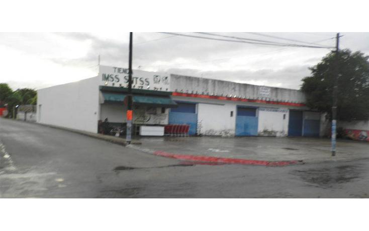 Foto de bodega en renta en  , tizimin centro, tizimín, yucatán, 1202877 No. 05
