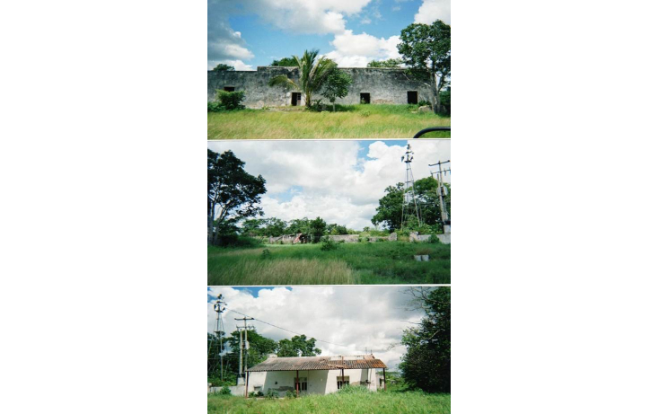 Foto de terreno habitacional en venta en  , tizimin centro, tizim?n, yucat?n, 1291993 No. 02