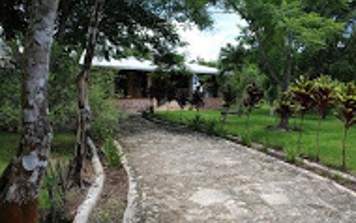 Foto de rancho en venta en  , tizimin centro, tizimín, yucatán, 1927731 No. 04