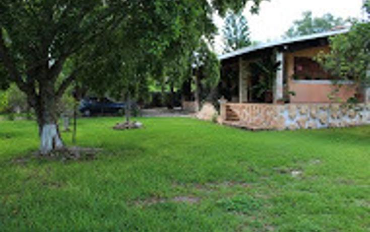 Foto de rancho en venta en  , tizimin centro, tizimín, yucatán, 1927731 No. 08