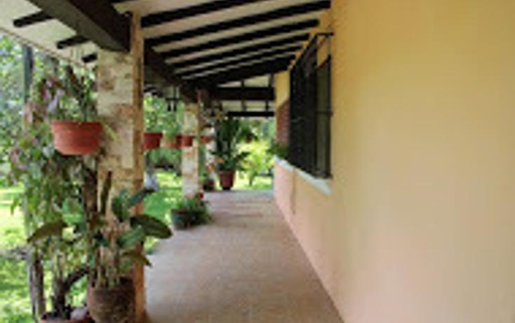 Foto de rancho en venta en  , tizimin centro, tizimín, yucatán, 1927731 No. 09