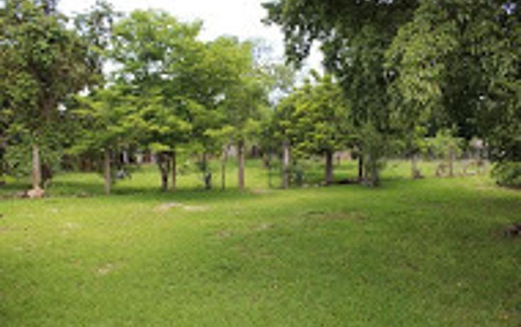 Foto de rancho en venta en  , tizimin centro, tizimín, yucatán, 1927731 No. 28