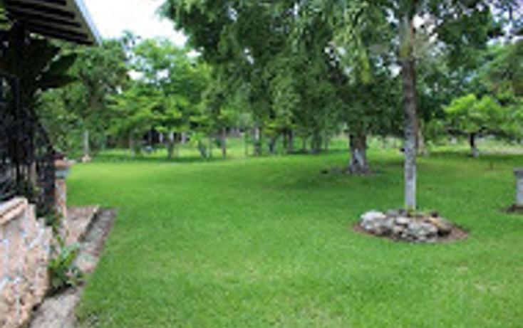 Foto de rancho en venta en  , tizimin centro, tizimín, yucatán, 1927731 No. 29