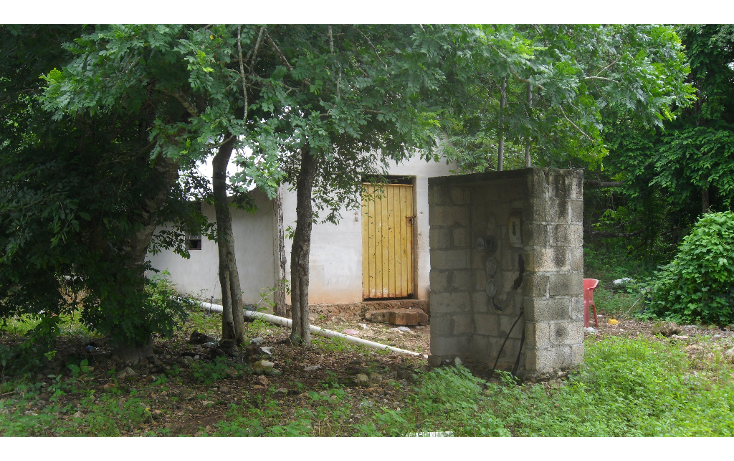 Foto de rancho en venta en  , tizimin centro, tizimín, yucatán, 1927747 No. 06