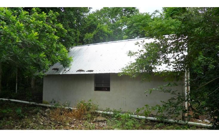 Foto de rancho en venta en  , tizimin centro, tizimín, yucatán, 1927747 No. 09