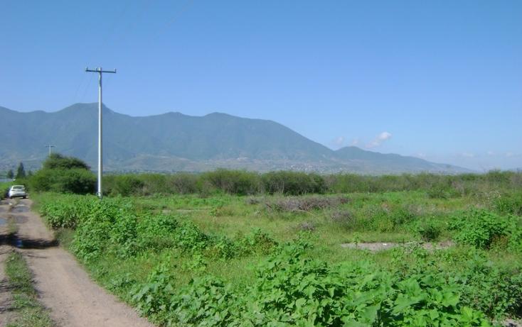Foto de terreno habitacional en venta en  , tlacolula de matamoros centro, tlacolula de matamoros, oaxaca, 1509367 No. 03