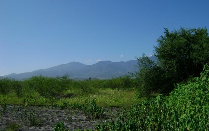 Foto de terreno habitacional en venta en  , tlacolula de matamoros centro, tlacolula de matamoros, oaxaca, 1509367 No. 06