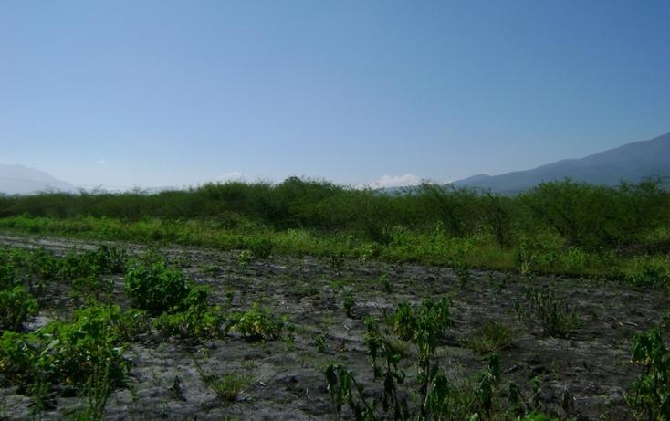 Foto de terreno habitacional en venta en  , tlacolula de matamoros centro, tlacolula de matamoros, oaxaca, 1509367 No. 07