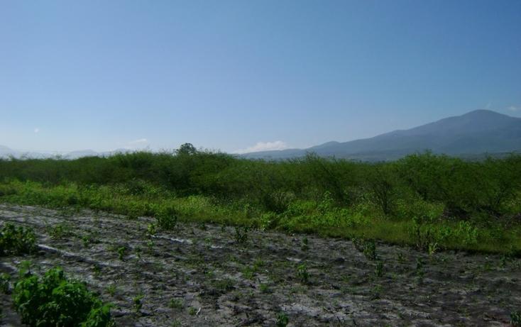 Foto de terreno habitacional en venta en  , tlacolula de matamoros centro, tlacolula de matamoros, oaxaca, 1509367 No. 08