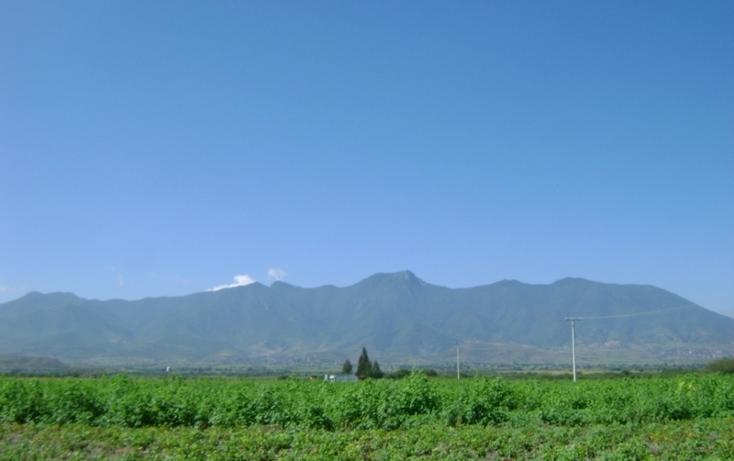 Foto de terreno habitacional en venta en  , tlacolula de matamoros centro, tlacolula de matamoros, oaxaca, 1509367 No. 11