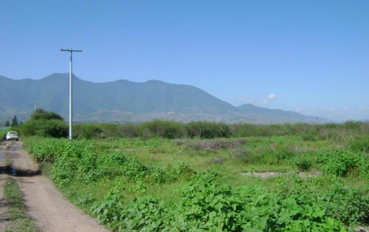 Foto de terreno habitacional en venta en  , tlacolula de matamoros centro, tlacolula de matamoros, oaxaca, 421654 No. 02