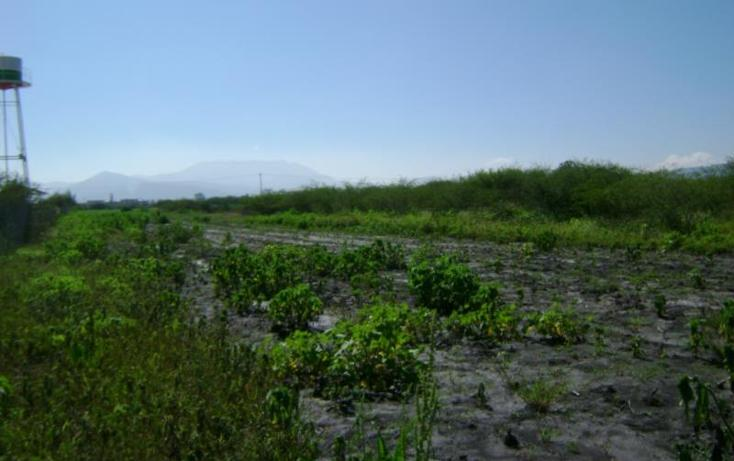 Foto de terreno habitacional en venta en  , tlacolula de matamoros centro, tlacolula de matamoros, oaxaca, 421654 No. 05