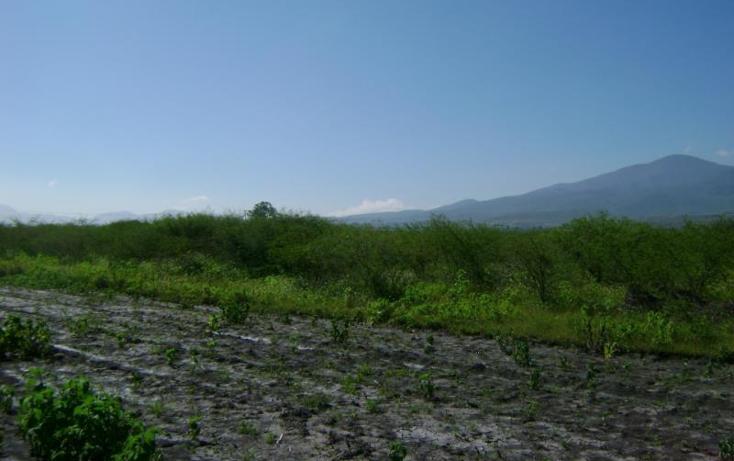 Foto de terreno habitacional en venta en  , tlacolula de matamoros centro, tlacolula de matamoros, oaxaca, 421654 No. 08