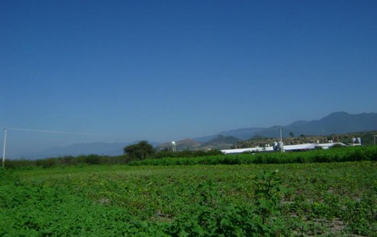 Foto de terreno habitacional en venta en  , tlacolula de matamoros centro, tlacolula de matamoros, oaxaca, 421654 No. 09
