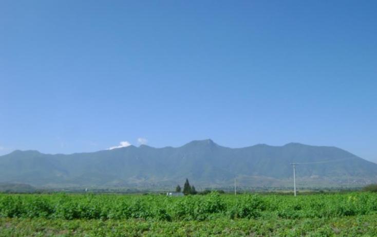 Foto de terreno habitacional en venta en  , tlacolula de matamoros centro, tlacolula de matamoros, oaxaca, 421654 No. 11