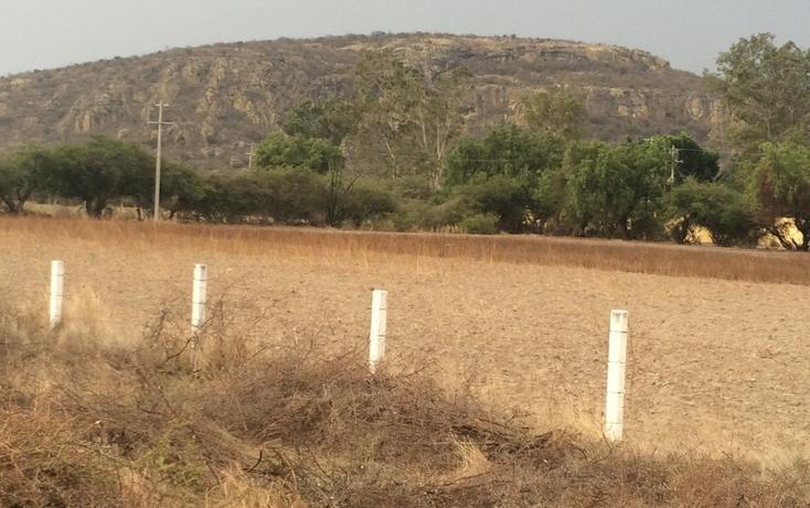 Foto de terreno habitacional en venta en  , tlacolula de matamoros centro, tlacolula de matamoros, oaxaca, 860881 No. 09