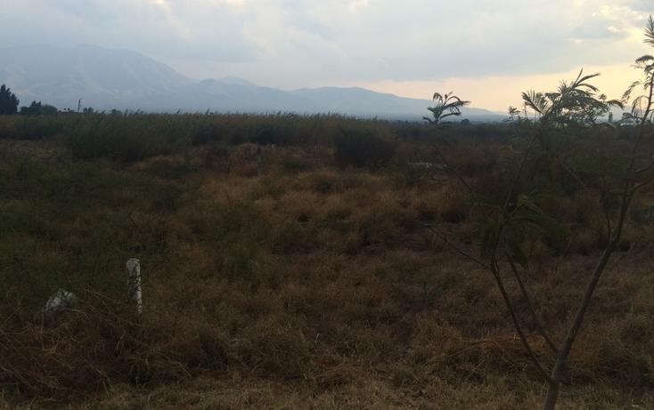 Foto de terreno habitacional en venta en  , tlacolula de matamoros centro, tlacolula de matamoros, oaxaca, 860893 No. 02