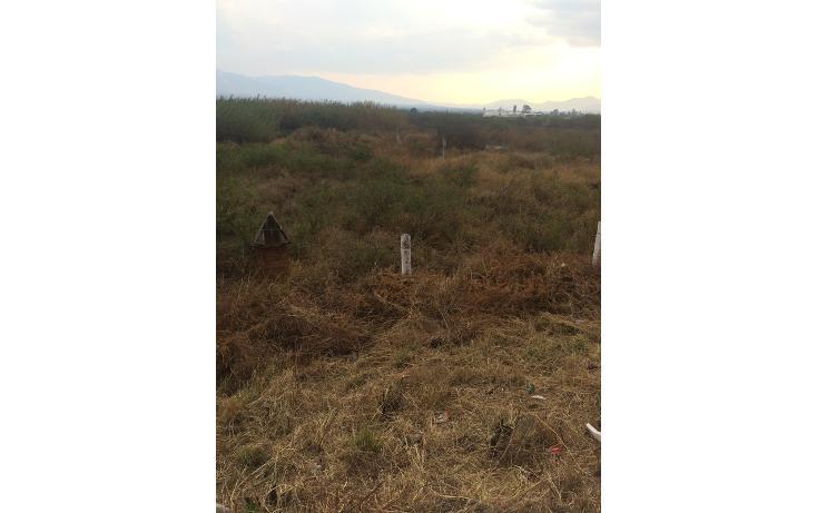 Foto de terreno habitacional en venta en  , tlacolula de matamoros centro, tlacolula de matamoros, oaxaca, 860893 No. 09