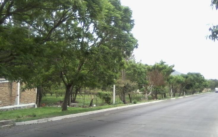 Foto de terreno comercial en venta en  , tlajomulco centro, tlajomulco de z??iga, jalisco, 2034114 No. 09