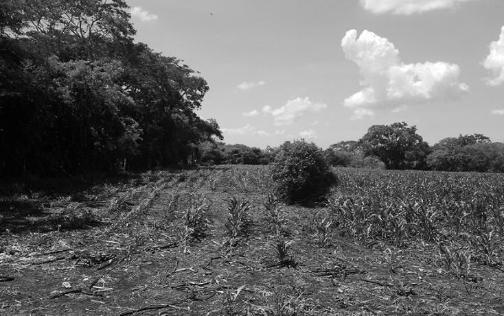 Foto de terreno comercial en venta en  , tlalixcoyan, tlalixcoyan, veracruz de ignacio de la llave, 1240231 No. 01