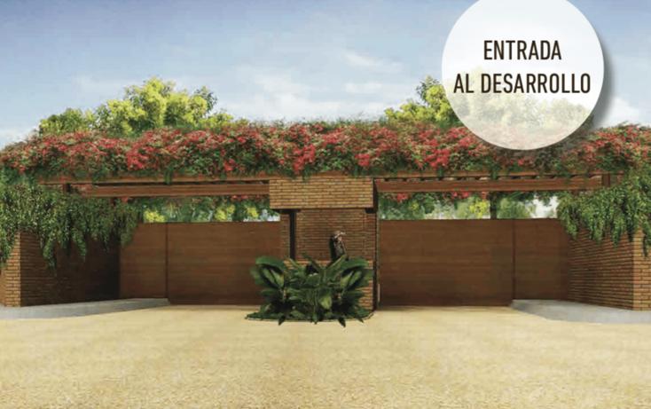 Foto de terreno habitacional en venta en  , tlalixcoyan, tlalixcoyan, veracruz de ignacio de la llave, 1481653 No. 06