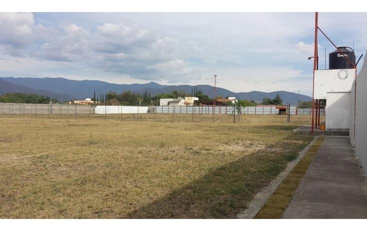Foto de terreno comercial en venta en  , tlalixtac de cabrera, tlalixtac de cabrera, oaxaca, 1646583 No. 05