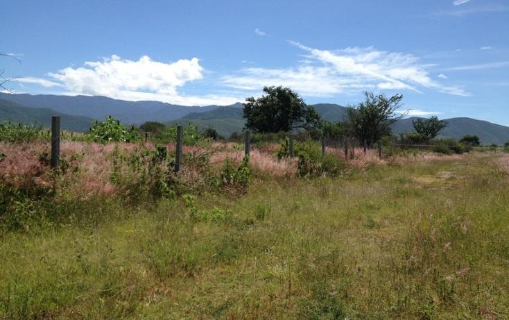 Foto de terreno habitacional en venta en  , tlalixtac de cabrera, tlalixtac de cabrera, oaxaca, 2735657 No. 03
