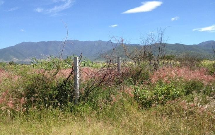 Foto de terreno habitacional en venta en  , tlalixtac de cabrera, tlalixtac de cabrera, oaxaca, 2735657 No. 06
