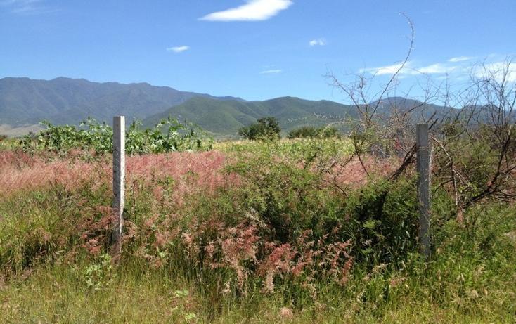 Foto de terreno habitacional en venta en  , tlalixtac de cabrera, tlalixtac de cabrera, oaxaca, 2735657 No. 08