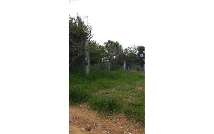 Foto de terreno habitacional en venta en  , tlalixtac de cabrera, tlalixtac de cabrera, oaxaca, 825121 No. 03