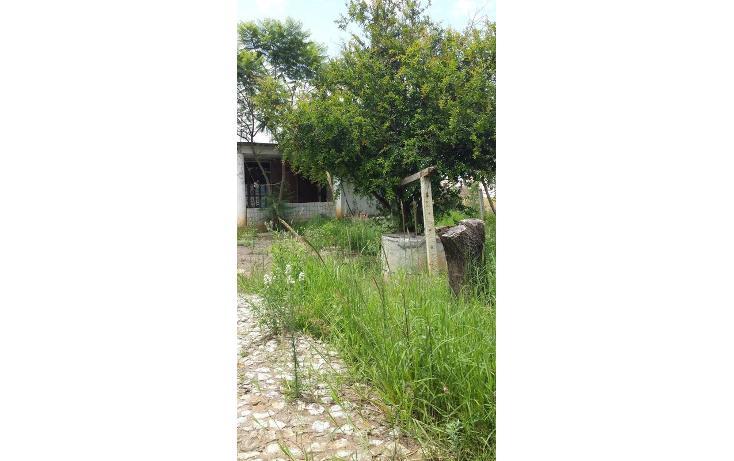Foto de terreno habitacional en venta en  , tlalixtac de cabrera, tlalixtac de cabrera, oaxaca, 825121 No. 07
