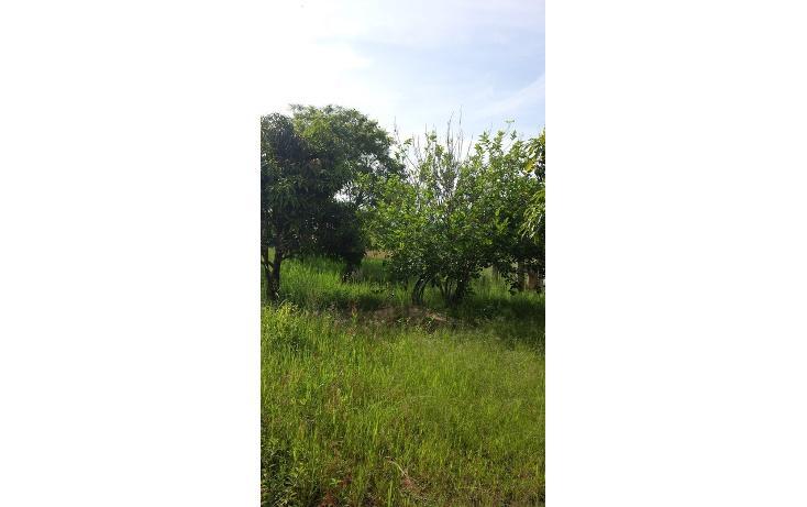 Foto de terreno habitacional en venta en  , tlalixtac de cabrera, tlalixtac de cabrera, oaxaca, 825121 No. 08