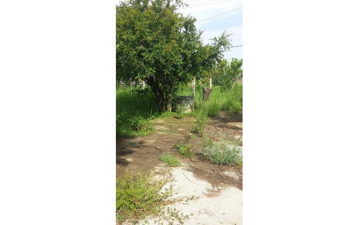 Foto de terreno habitacional en venta en  , tlalixtac de cabrera, tlalixtac de cabrera, oaxaca, 825121 No. 10
