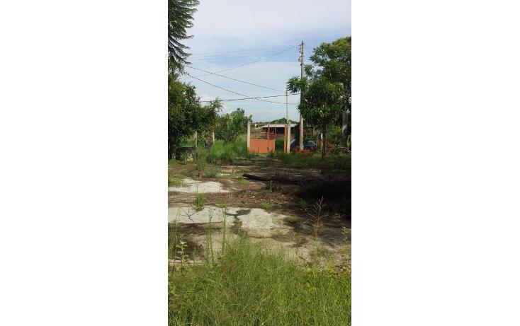 Foto de terreno habitacional en venta en  , tlalixtac de cabrera, tlalixtac de cabrera, oaxaca, 825121 No. 11