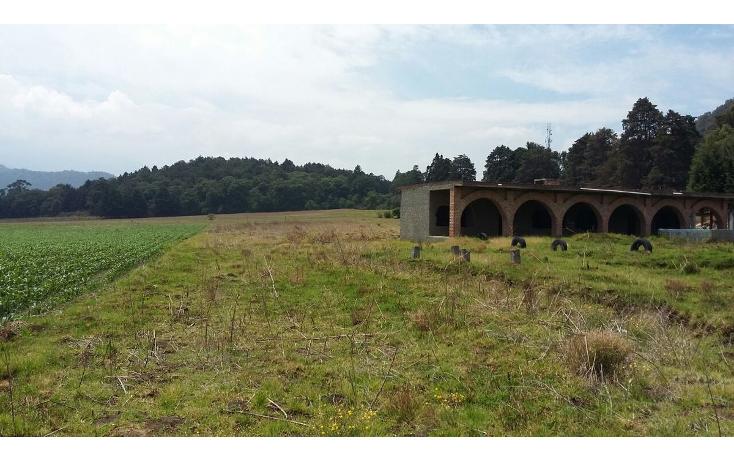 Foto de terreno habitacional en venta en  , tlalmanalco, tlalmanalco, m?xico, 1909427 No. 09
