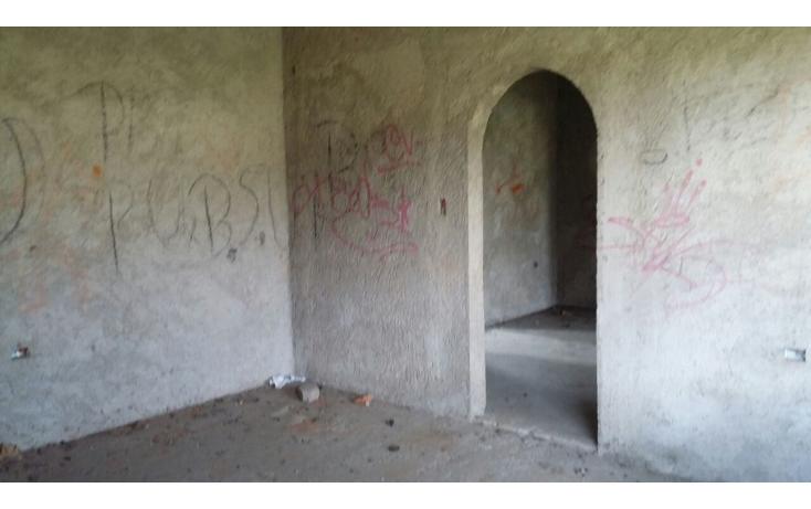 Foto de terreno habitacional en venta en  , tlalmanalco, tlalmanalco, m?xico, 1909427 No. 11