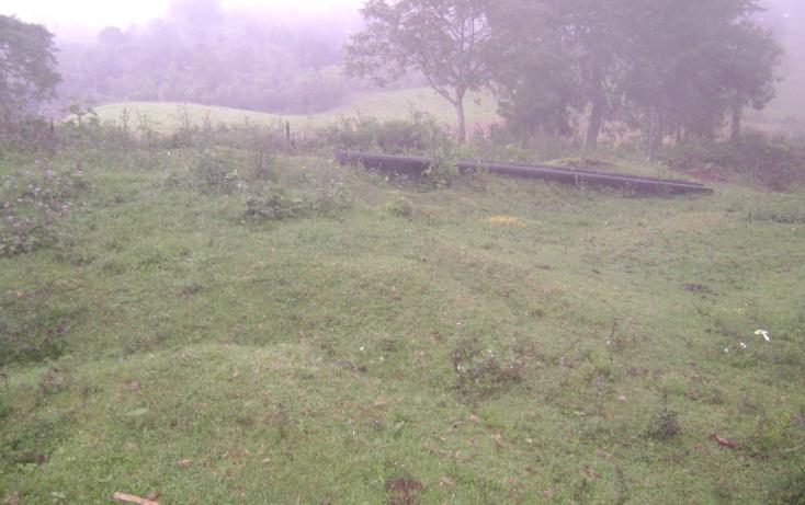 Foto de terreno habitacional en venta en  , tlalnelhuayocan, tlalnelhuayocan, veracruz de ignacio de la llave, 1092069 No. 01