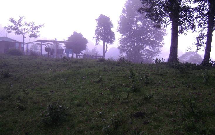 Foto de terreno habitacional en venta en  , tlalnelhuayocan, tlalnelhuayocan, veracruz de ignacio de la llave, 1092069 No. 02