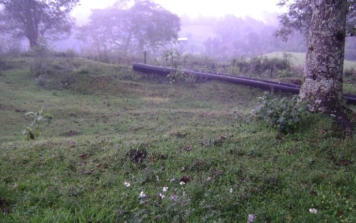 Foto de terreno habitacional en venta en  , tlalnelhuayocan, tlalnelhuayocan, veracruz de ignacio de la llave, 1092069 No. 03
