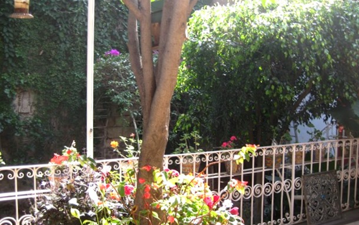 Foto de casa en venta en  , tlalpan centro, tlalpan, distrito federal, 1271243 No. 11