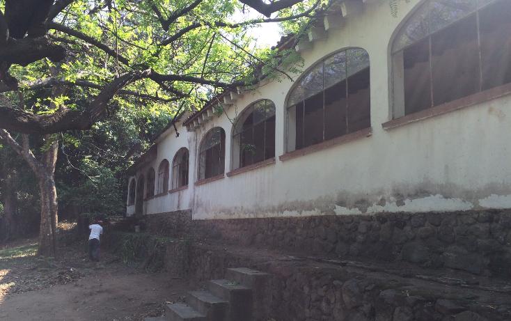 Foto de terreno habitacional en venta en  , tlaltenango, cuernavaca, morelos, 1776500 No. 15