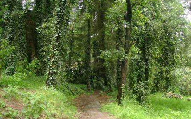 Foto de terreno habitacional en venta en tlamilololpan , san mateo tlaltenango, cuajimalpa de morelos, distrito federal, 86763 No. 02