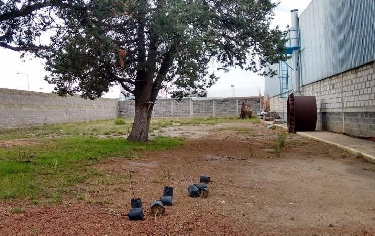 Foto de casa en renta en  , tlaxco, tlaxco, tlaxcala, 2013710 No. 04