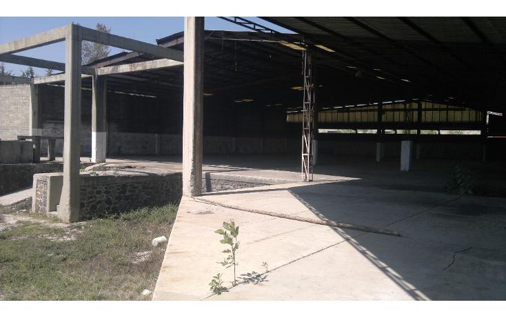 Foto de nave industrial en venta en  , tlaxinacalpan, tepeji del río de ocampo, hidalgo, 1445823 No. 10