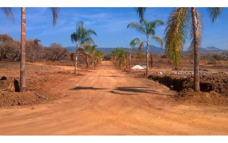 Foto de terreno habitacional en venta en  , tlayacapan, tlayacapan, morelos, 1076989 No. 01