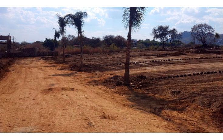 Foto de terreno habitacional en venta en  , tlayacapan, tlayacapan, morelos, 1076989 No. 02