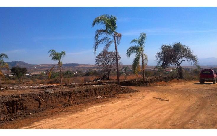 Foto de terreno habitacional en venta en  , tlayacapan, tlayacapan, morelos, 1076989 No. 03