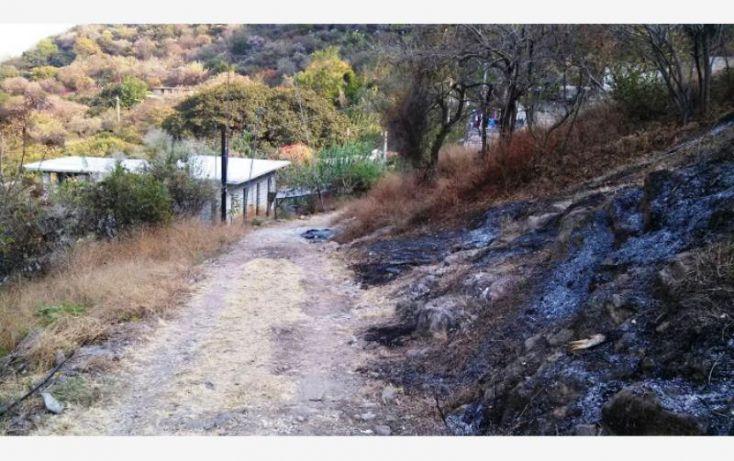Foto de terreno habitacional en venta en, tlayacapan, tlayacapan, morelos, 1574494 no 04