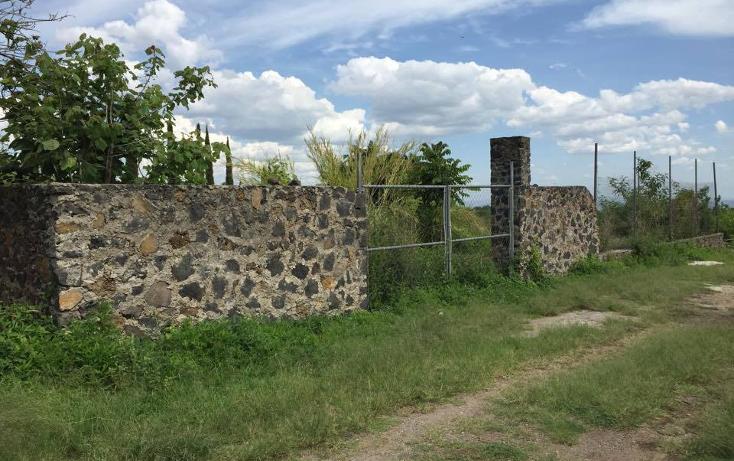 Foto de terreno habitacional en venta en  , tlayacapan, tlayacapan, morelos, 1661896 No. 02
